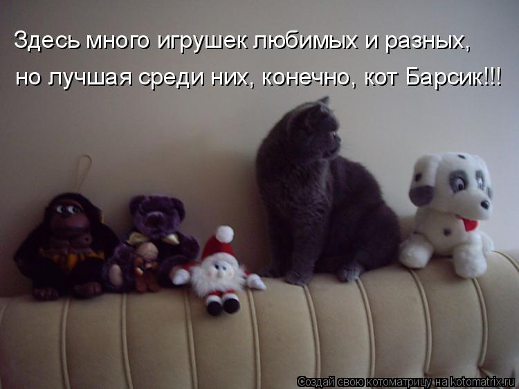 Котоматрица: Здесь много игрушек любимых и разных, но лучшая среди них, конечно, кот Барсик!!!