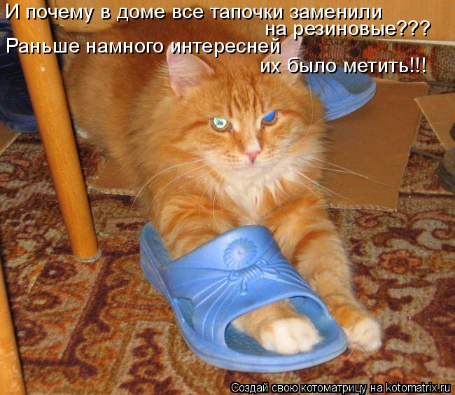 Котоматрица: И почему в доме все тапочки заменили  на резиновые??? Раньше намного интересней  их было метить!!!