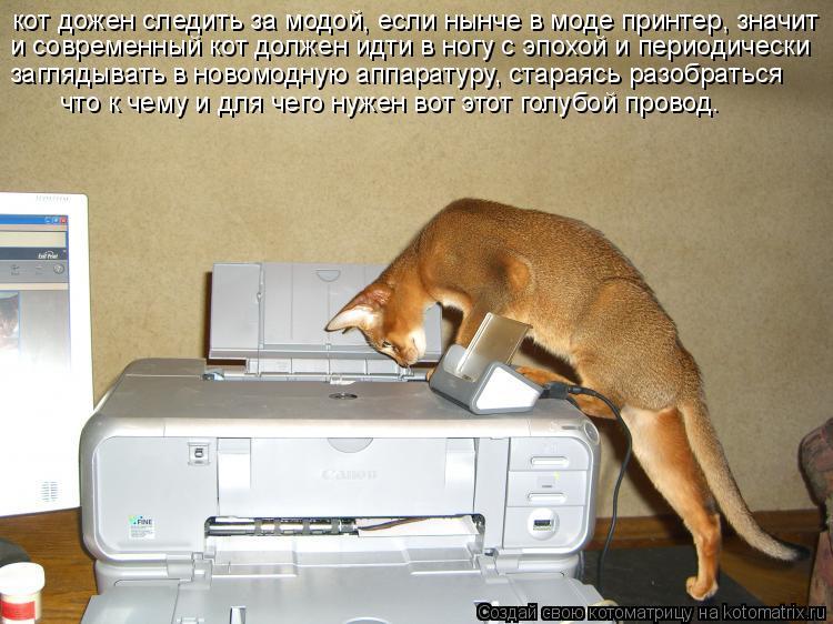 Котоматрица: кот дожен следить за модой, если нынче в моде принтер, значит и современный кот должен идти в ногу с эпохой и периодически заглядывать в нов