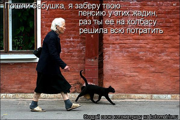 Котоматрица: Пошли бабушка, я заберу твою пенсию у этих жадин,  раз ты ее на колбасу решила всю потратить