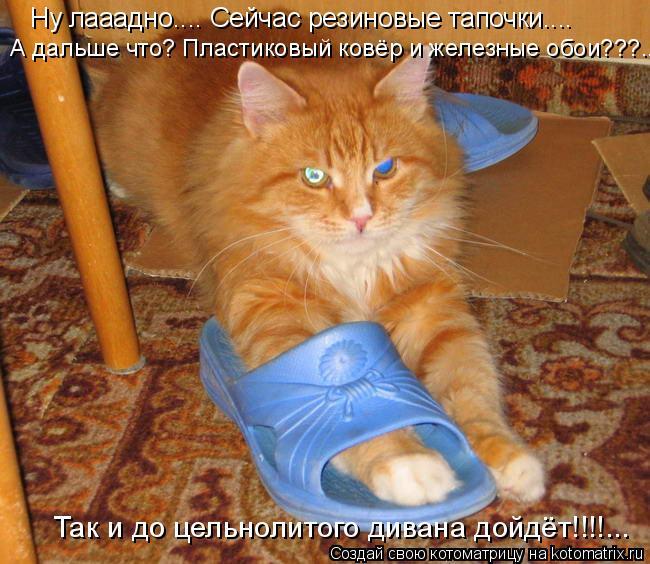Котоматрица: Ну лааадно.... Сейчас резиновые тапочки.... Так и до цельнолитого дивана дойдёт!!!!... А дальше что? Пластиковый ковёр и железные обои???...