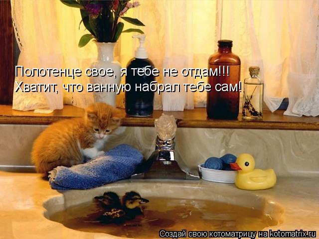 Котоматрица: Полотенце свое, я тебе не отдам!!! Хватит, что ванную набрал тебе сам!