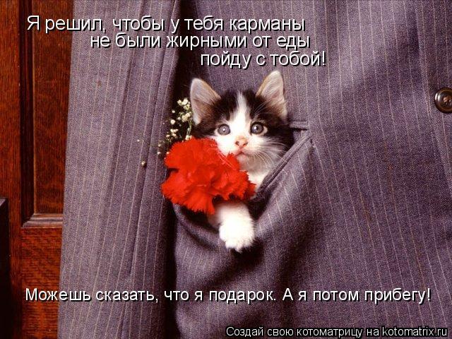 Котоматрица: Я решил, чтобы у тебя карманы  не были жирными от еды пойду с тобой! Можешь сказать, что я подарок. А я потом прибегу!