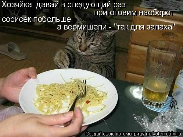 """Котоматрица: Хозяйка, давай в следующий раз  приготовим наоборот: сосисек побольше,  а вермишели - """"так для запаха""""."""