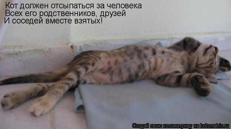 Котоматрица: Кот должен отсыпаться за человека Всех его родственников, друзей И соседей вместе взятых!