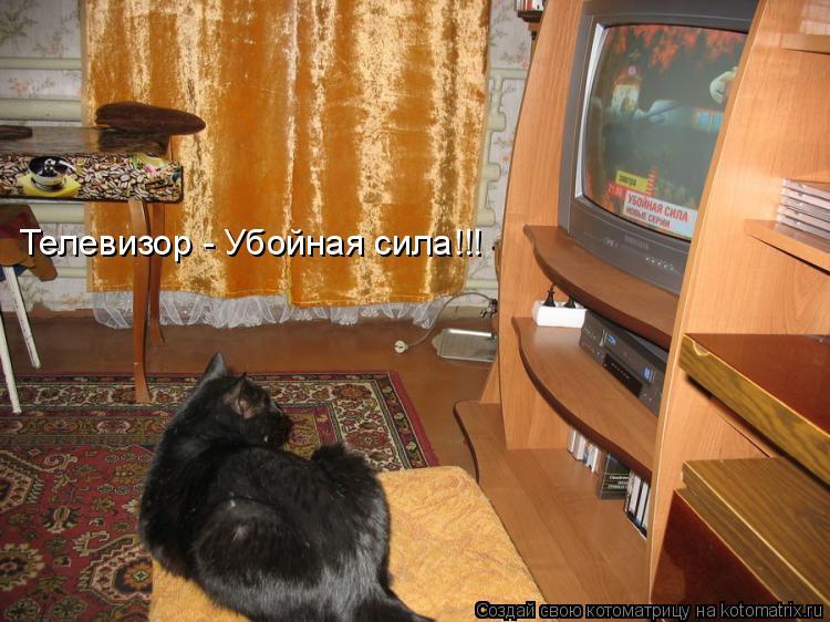 Котоматрица: Телевизор - Убойная сила!!!