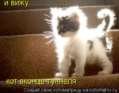 Котоматрица: и вижу.................... и вижу.................... кот вконце туннеля