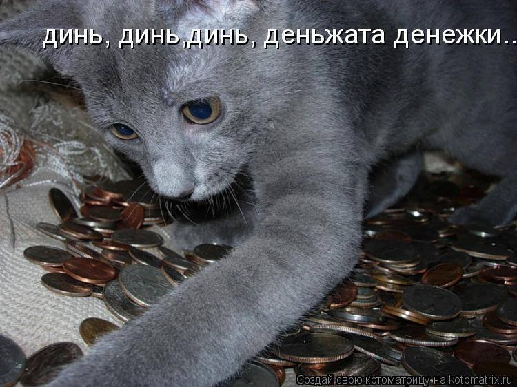 Котоматрица: динь, динь,динь, деньжата денежки....