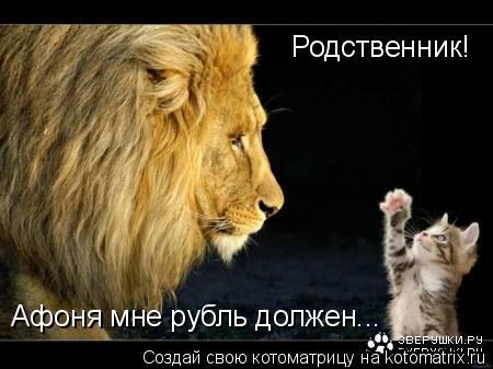 Котоматрица: Родственник! Афоня мне рубль должен...