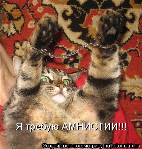 Котоматрица: Я требую АМНИСТИИ!!!
