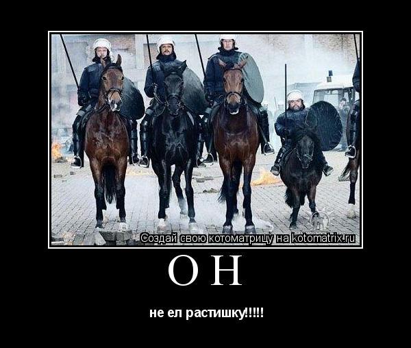 http://kotomatrix.ru/images/lolz/2009/10/23/Qi.jpg
