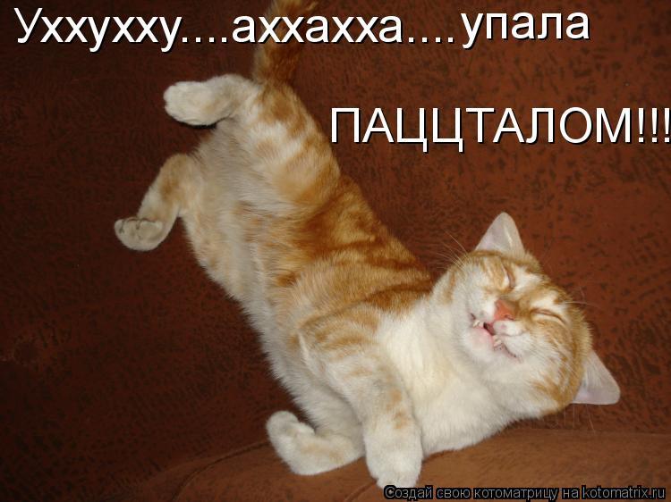 Котоматрица: Уххухху....аххахха.... упала ПАЦЦТАЛОМ!!!