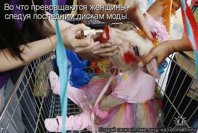 Котоматрица: Во что превращаются женщины, следуя последним пискам моды.