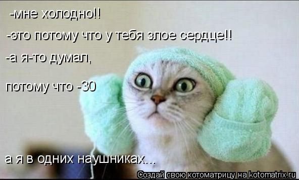 Котоматрица: -мне холодно!! -это потому что у тебя злое сердце!! -а я-то думал, потому что -30 а я в одних наушниках...