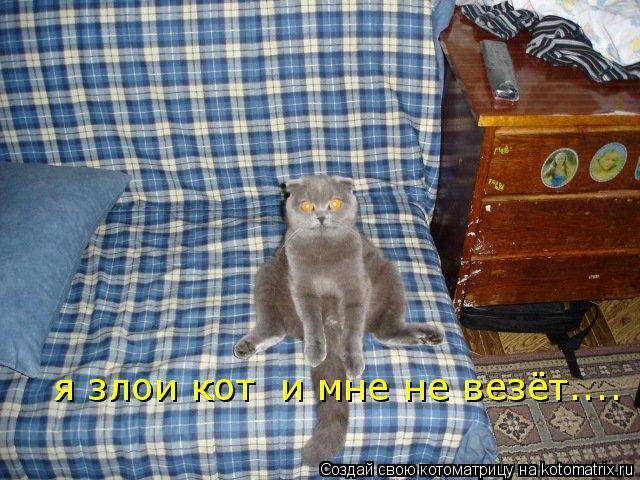 Котоматрица: я злои кот  и мне не везёт....