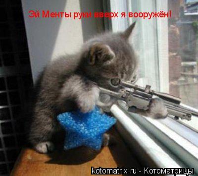 Котоматрица: Эй Менты руки вверх я вооружён!