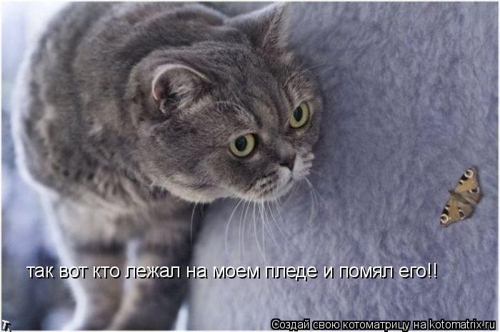 http://kotomatrix.ru/images/lolz/2009/10/24/385871.jpg