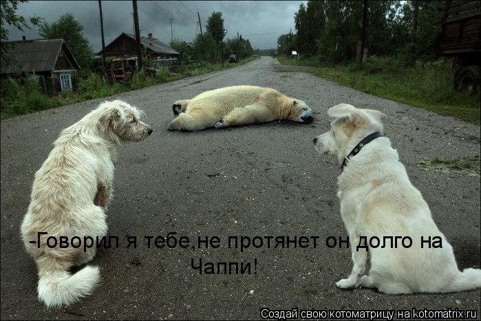 Котоматрица: -Говорил я тебе,не протянет он долго на Чаппи!