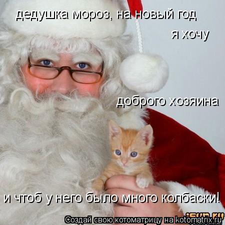 Котоматрица: дедушка мороз, на новый год  я хочу доброго хозяина и чтоб у него было много колбаски!