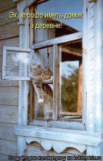 Котоматрица: Эх, хорошо иметь домик в деревне!