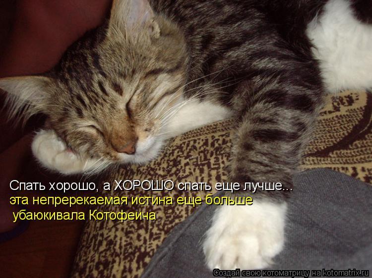 Котоматрица: Спать хорошо, а ХОРОШО спать еще лучше... эта непререкаемая истина еще больше  убаюкивала Котофеича