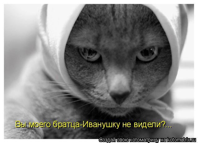 Котоматрица: Вы моего братца-Иванушку не видели?...