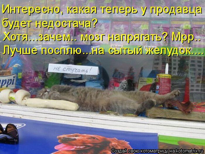 Котоматрица: Интересно, какая теперь у продавца будет недостача? Лучше посплю...на сытый желудок..... Хотя...зачем.. мозг напрягать? Мрр..