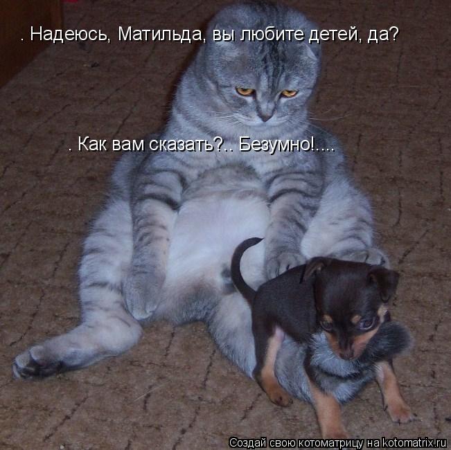 Котоматрица: — Надеюсь, Матильда, вы любите детей, да? — Как вам сказать?.. Безумно!....