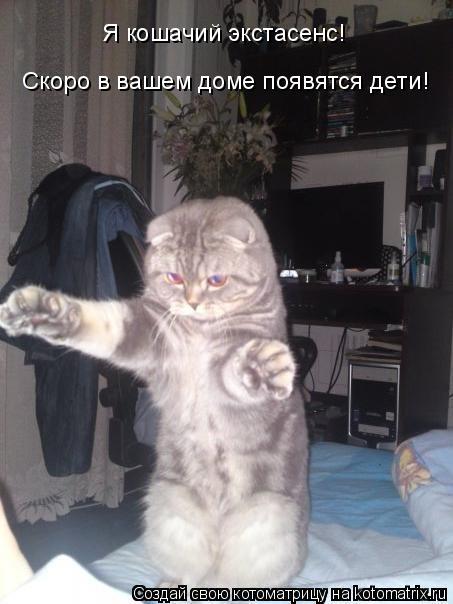 Котоматрица: Я кошачий экстасенс!  Скоро в вашем доме появятся дети!