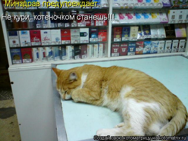 Котоматрица: Минздрав предупреждает: Не кури, котеночком станешь!!!