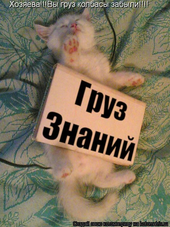 Котоматрица: Хозяева!!!Вы груз колбасы забыли!!!!