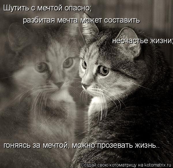 Котоматрица: Шутить с мечтой опасно; разбитая мечта может составить несчастье жизни; гоняясь за мечтой, можно прозевать жизнь….
