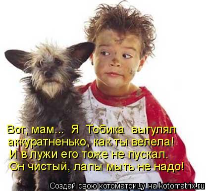 Котоматрица: Вот, мам...  Я  Тобика  выгулял И в лужи его тоже не пускал.  Он чистый, лапы мыть не надо! аккуратненько, как ты велела!