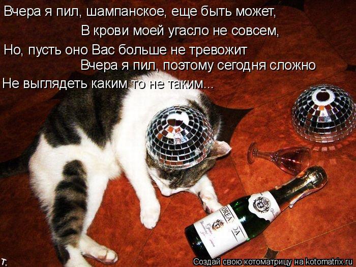 Котоматрица: Вчера я пил, шампанское, еще быть может, В крови моей угасло не совсем, Но, пусть оно Вас больше не тревожит Вчера я пил, поэтому сегодня сложн