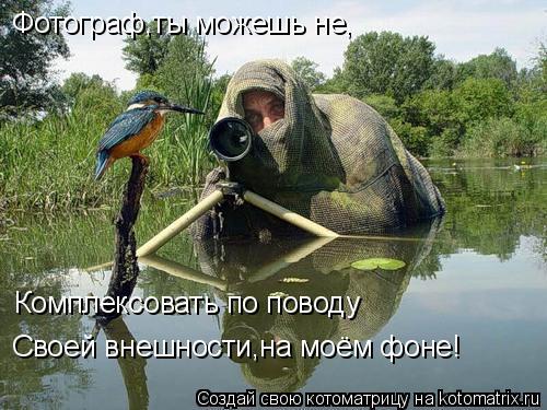 Котоматрица: Фотограф,ты можешь не, Комплексовать по поводу Своей внешности,на моём фоне!