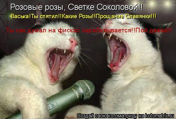 Котоматрица: Розовые розы, Светке Соколовой!! Васька!Ты спятил!!Какие Розы!!Прощание Славянки!!! Ты как думал на фискас зарабатывается!!Пой давай!!