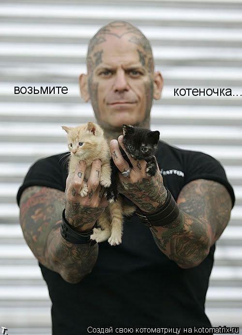 Котоматрица: возьмите  котеночка...