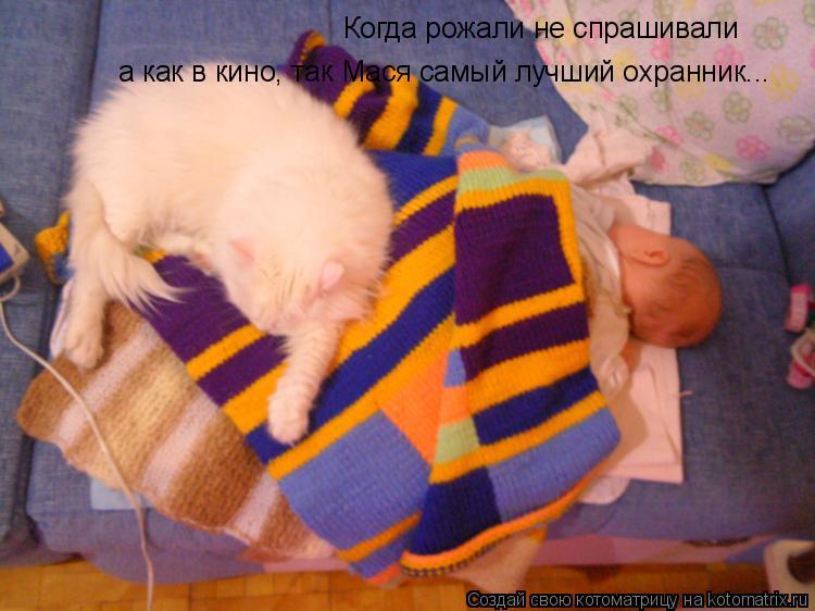 Котоматрица: Когда рожали не спрашивали а как в кино, так Мася самый лучший охранник...