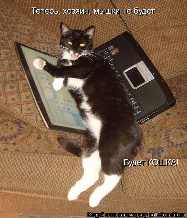 Котоматрица: Теперь, хозяин, мышки не будет! Будет КОШКА!