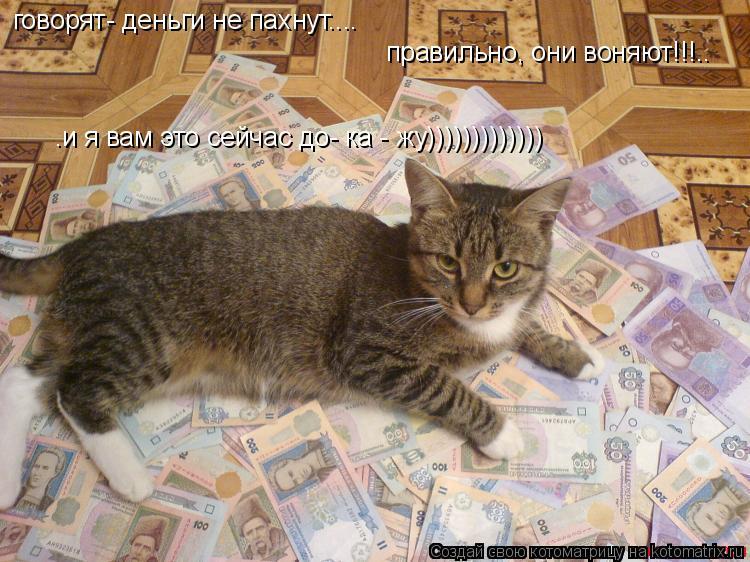 Котоматрица: говорят- деньги не пахнут.... правильно, они воняют!!!.. .и я вам это сейчас до- ка - жу)))))))))))))