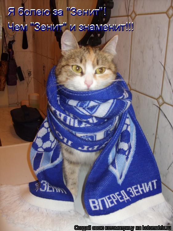 """Котоматрица: Я болею за """"Зенит""""! Я болею за """"Зенит""""! Чем """"Зенит"""" и знаменит!!! Чем """"Зенит"""" и знаменит!!!"""
