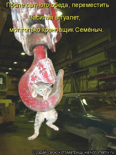 Котоматрица: После сытного обеда, переместить Василия в туалет,  мог только крановщик Семёныч.