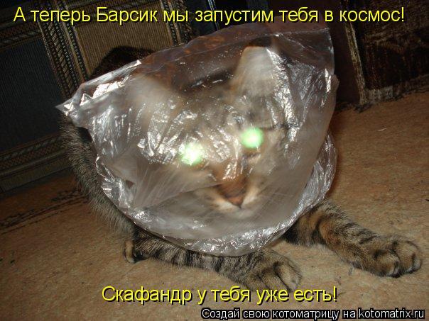 Котоматрица: А теперь Барсик мы запустим тебя в космос! Скафандр у тебя уже есть!