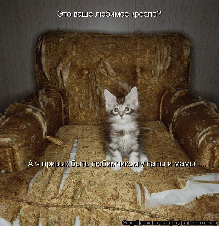 Котоматрица: Это ваше любимое кресло? А я привык быть любимчиком у папы и мамы......
