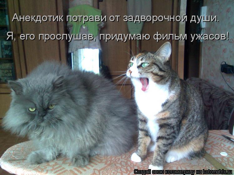 Котоматрица: Анекдотик потрави от задворочной души. Я, его прослушав, придумаю фильм ужасов!