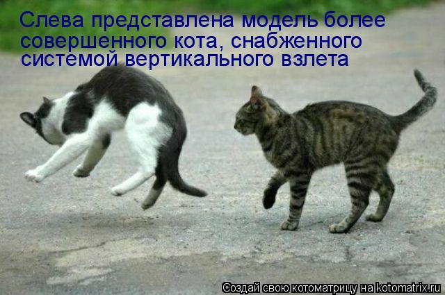 Котоматрица: Слева представлена модель более совершенного кота, снабженного системой вертикального взлета