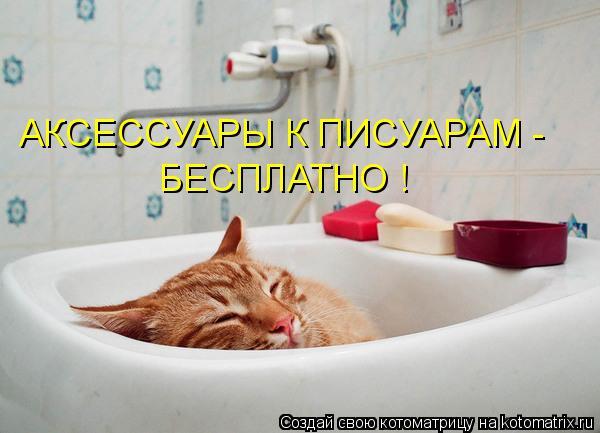 Котоматрица: АКСЕССУАРЫ К ПИСУАРАМ - БЕСПЛАТНО !
