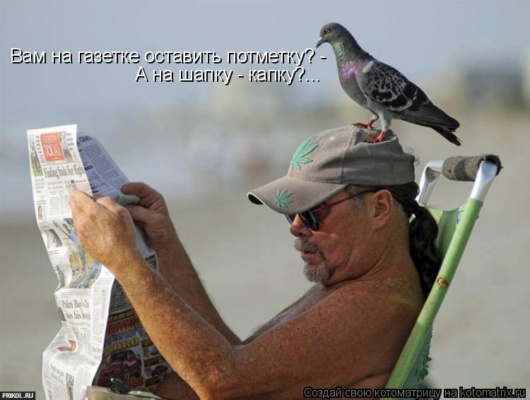 Котоматрица: Вам на газетке оставить потметку? - А на шапку - капку?...