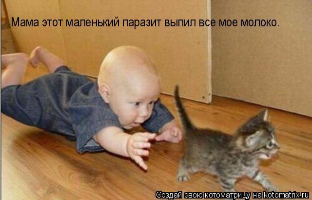 Котоматрица: Мама этот маленький паразит выпил все мое молоко.