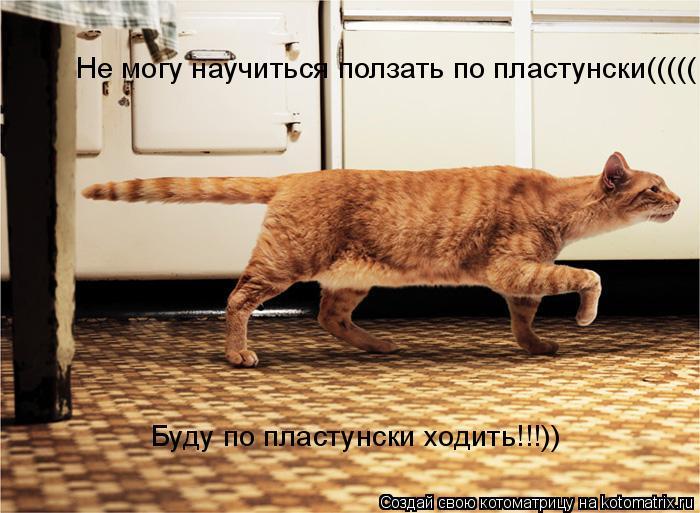Котоматрица: Не могу научиться ползать по пластунски((((( Буду по пластунски ходить!!!))